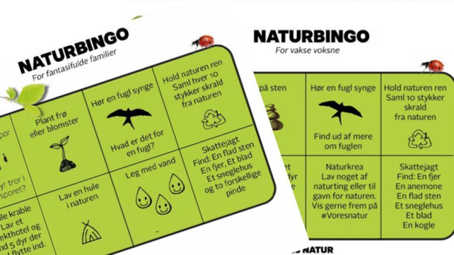 Spil bingo om naturen